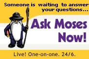 Ask Moses. Live. One-on-one.